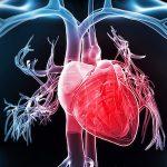 829 Cardiomyopathy