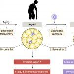 1388 Experimental COVID-19 vaccine safe, generates immune response