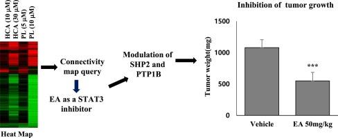 2578 Ethacrynic acid, a diuretic drug with potential anti-SARS-CoV-2 activity